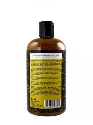 Argan Oil and Biotin Shampoo 500ml Back