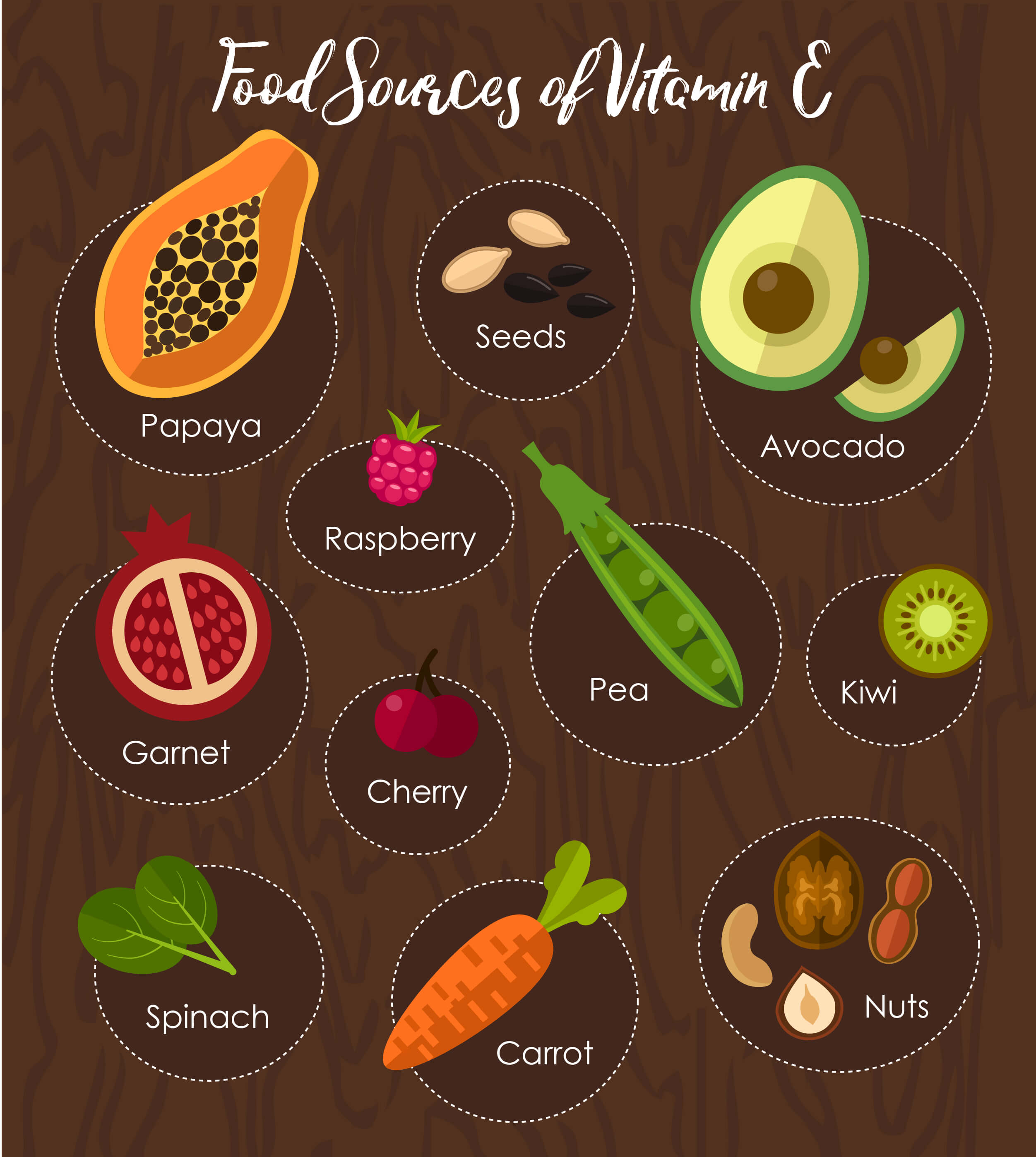 Infographic on food sources of vitamin E